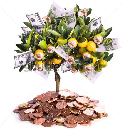 Fruits of labour money tree