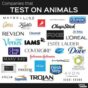 Companies and products that test on Animals